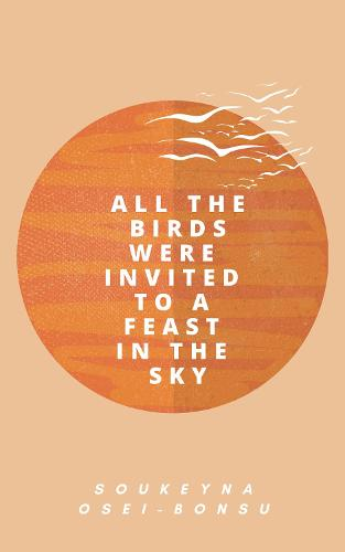All the Birds Were Invited to a Feast in the Sky (Hardback)