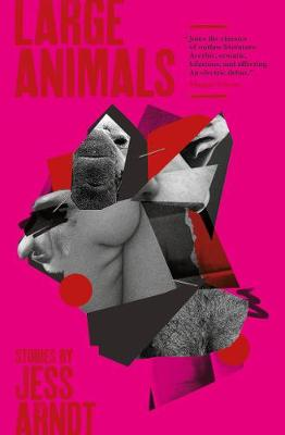Large Animals: Stories (Paperback)
