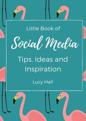 Little Book of Social Media Ideas and Inspiration: Ideas, inspirations and nudges for your next social media post (Paperback)