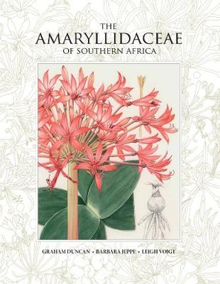 Amaryllidaceae of Southern Africa, The (Hardback)