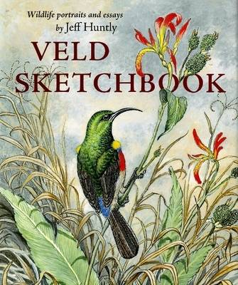 Veld Sketchbook: Wildlife Portraits and Essays (Hardback)