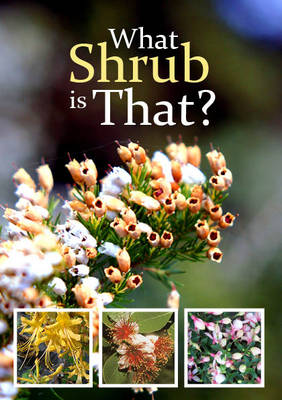 What Shrub is That? (Paperback)
