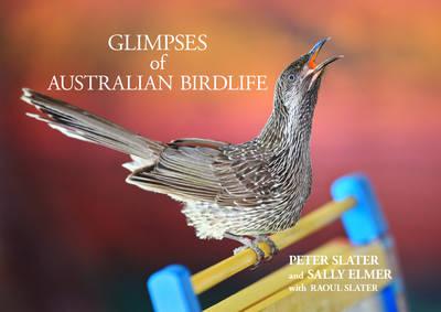 Glimpses of Australian Birdlife (Hardback)
