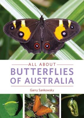 All About Butterflies of Australia (Paperback)