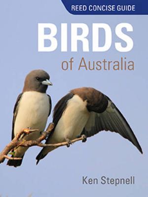 Birds of Australia (Paperback)