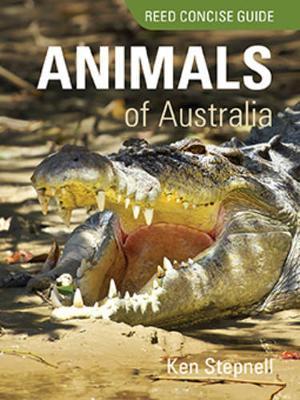 Animals of Australia (Paperback)