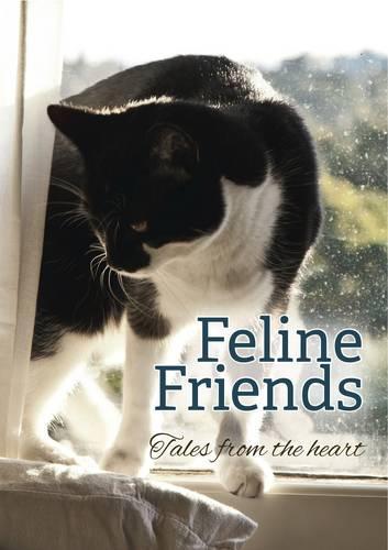 Feline Friends: Tales From the Heart (Hardback)