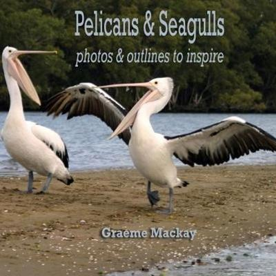 Pelicans & Seagulls: Photos and Outlines to Inspire (Paperback)