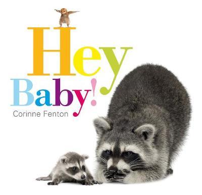 Hey Baby! (Paperback)