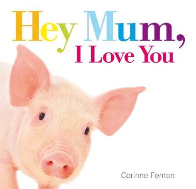Hey Mum, I Love You (Hardback)