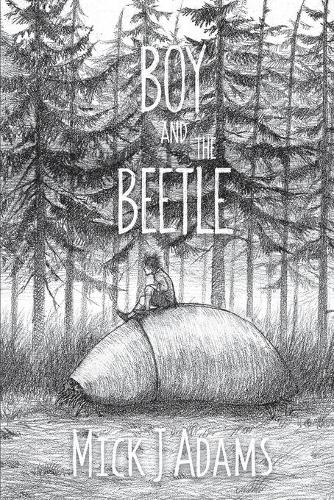 Boy and the Beetle (Paperback)