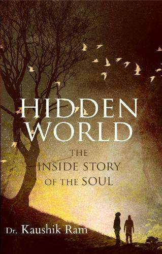 Hidden World: The Inside Story of the Soul (Paperback)