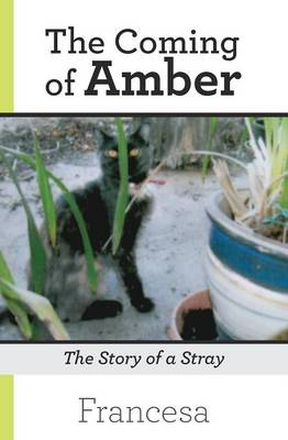 The Coming of Amber: The Story of a Stray (Paperback)
