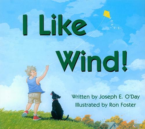 I Like Wind! (Hardback)