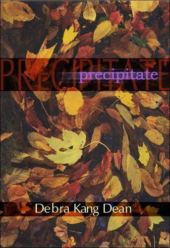 Precipitates - American Poets Continuum (Paperback) 81.00 (Paperback)