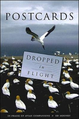 Postcards Dropped in Flight: In Praise of Avian Companions (Paperback)