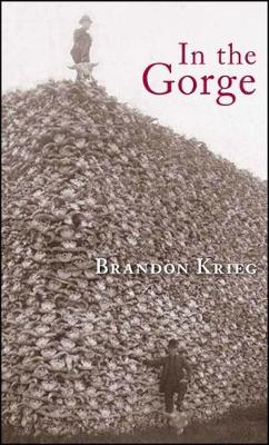 In the Gorge: Poems (Paperback)