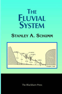 The Fluvial System (Paperback)