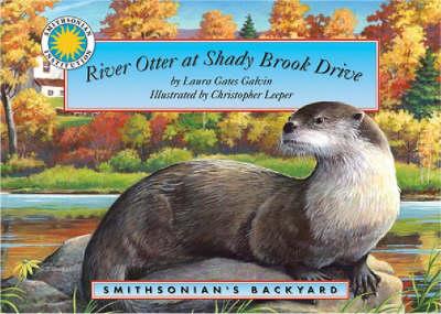 River Otter at Autumn Lane - Smithsonian's Backyard S.