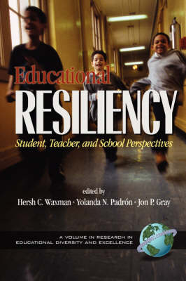 Educational Resilience: Student, Teacher and Perspectives - Research in Educational Diversity & Excellence (Paperback)