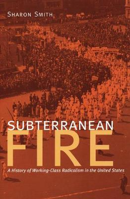 Subterranean Fire: A History of Working-Class Radicalism in the United States (Paperback)