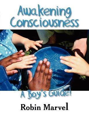 Awakening Consciousness: A Boy's Guide! (Paperback)