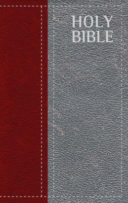 ERV Everyday Reading Bible (Paperback)