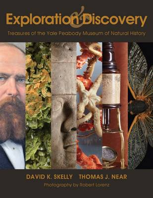 Exploration and Discovery - Treasures of the Yale Peabody Museum of Natural History (Paperback)