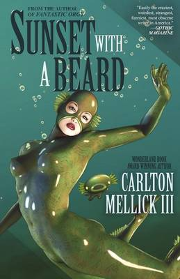 Sunset with a Beard (Paperback)