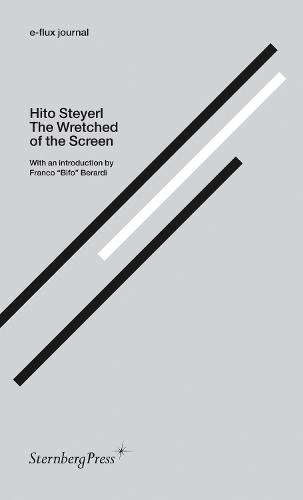 Hito Steyerl - the Wretched of the Screen. E-flux Journal (Paperback)