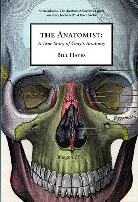 The Anatomist: A True Story of Gray's Anatomy (Paperback)