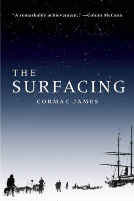 The Surfacing (Paperback)