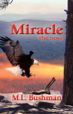 Miracle, the Novel (Paperback)