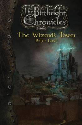 The Wizard's Tower: The Birthright Chronicles (Paperback)