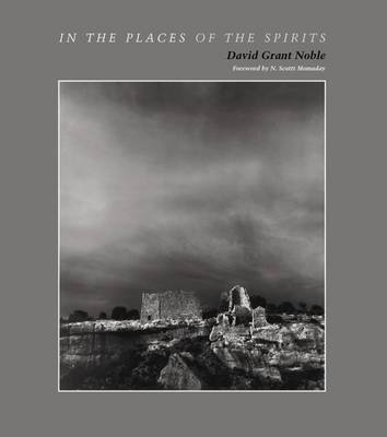 In the Places of the Spirits (Paperback)