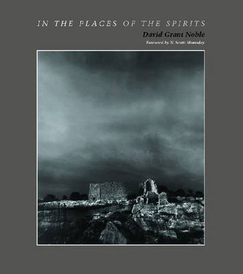 In the Places of the Spirits (Hardback)