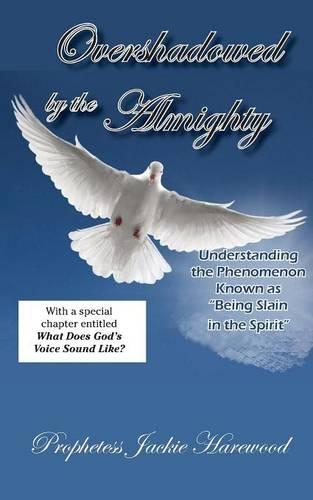 Overshadowed by the Almighty (Paperback)