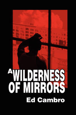 Wilderness of Mirrors (Paperback)