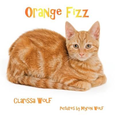 Orange Fizz (Paperback)