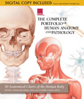 Complete Portfolio of Human Anatomy and Pathology (Hardback)