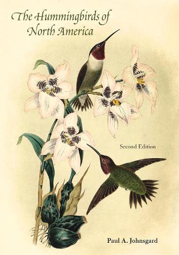 Hummingbirds of North America (Paperback)