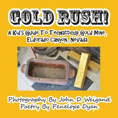 Gold Rush! a Kid's Guide to Techatticup Gold Mine, Eldorado Canyon, Nevada (Paperback)