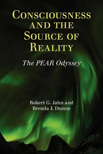Consciousness and the Source of Reality (Paperback)