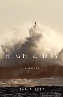 High & Dry (Paperback)