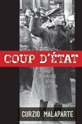 Coup D'Etat: How to Carry out a Successful Political Takeover (Paperback)