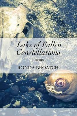 Lake of Fallen Constellations (Paperback)