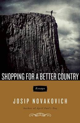 Shopping For A Better Country: Essays (Paperback)