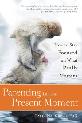Parenting In The Present Moment (Paperback)