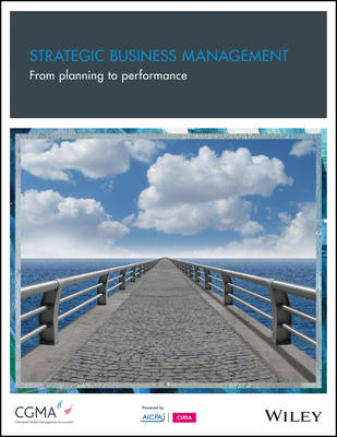 Strategic Business Management: From Planning to Performance (Paperback)