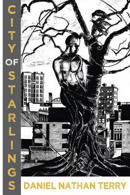 City of Starlings (Paperback)